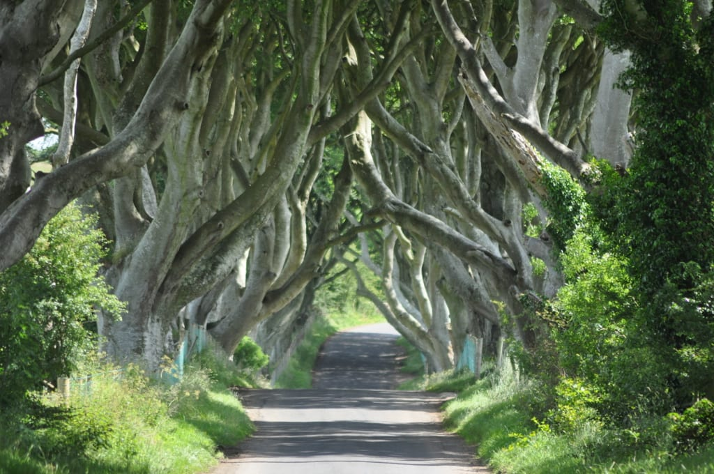 9 Game Of Thrones Locations in Northern Ireland You Have To Visit