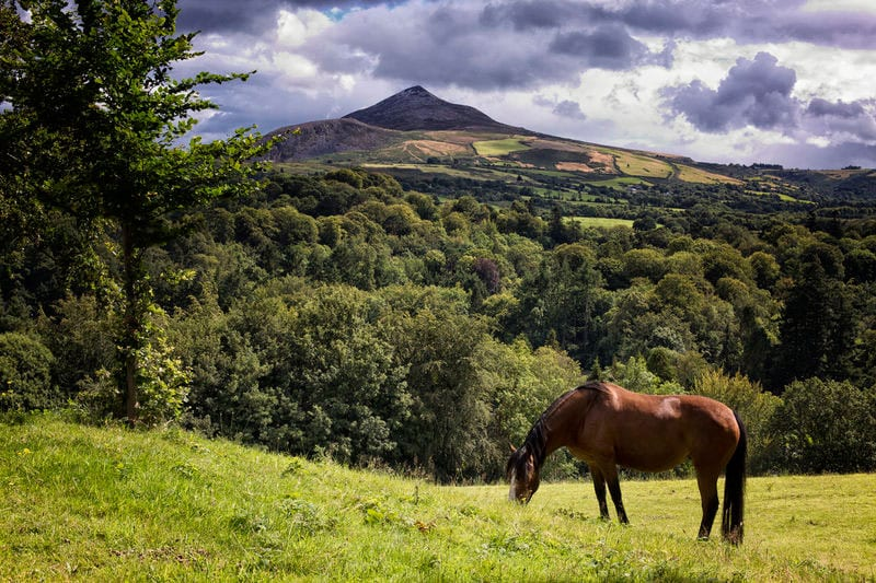 Wicklow mountains sugar loaf