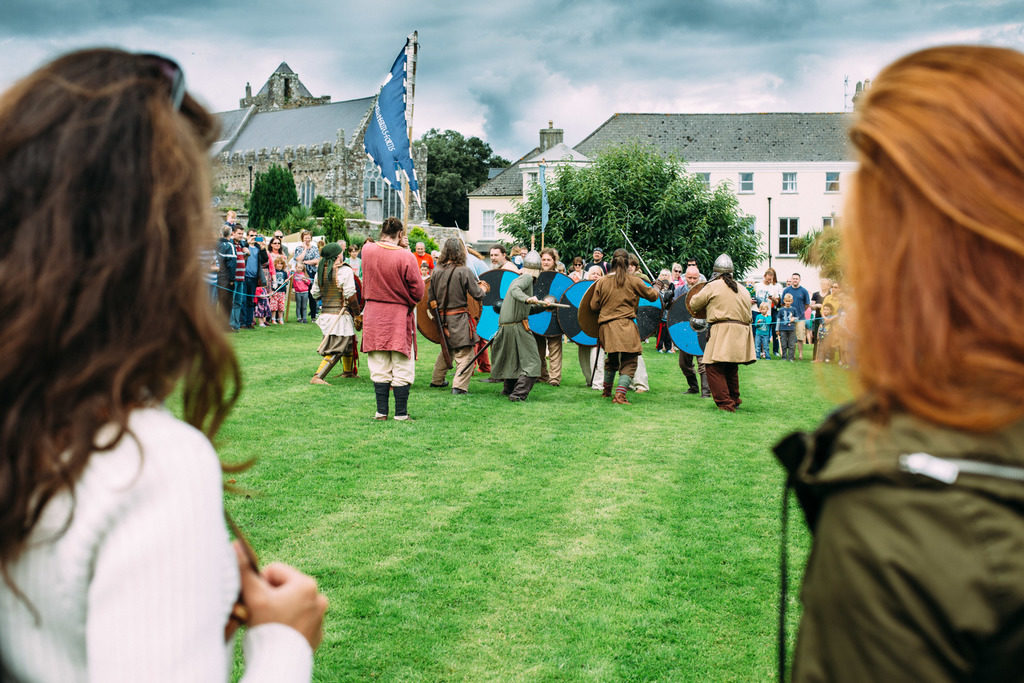 Viking battle Ireland
