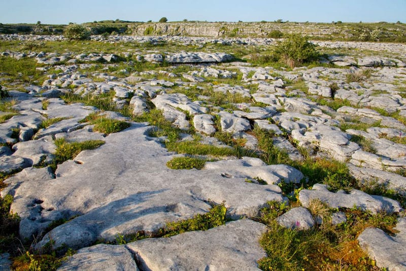 The Burren National Park: Karst Rock